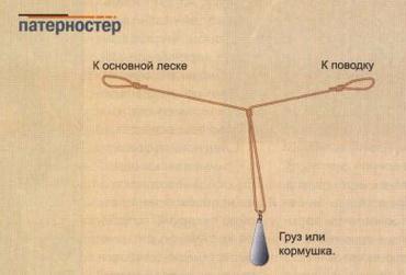 Партеностер - схема