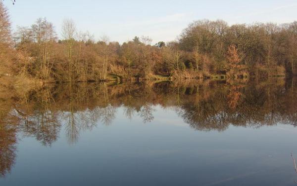 Осенью на водоеме