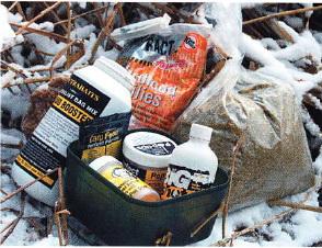 прикормки зимой