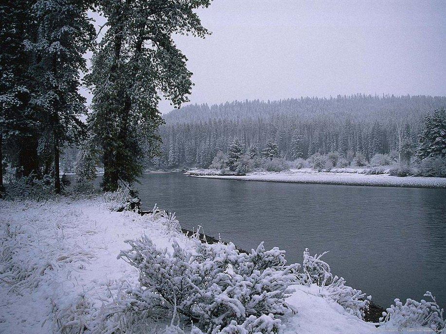 Рыбалка зимой без льда