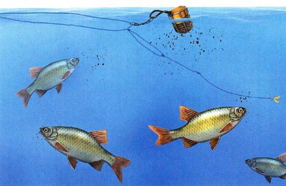 прикормка для белой рыбы зимой