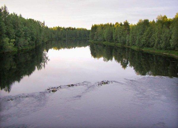 Река где ловится щука