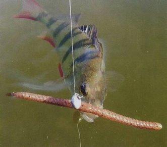 искусственный червь на поплавочной удочке