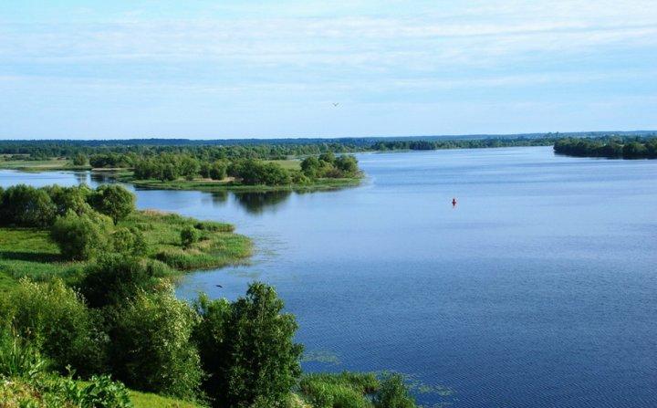 Река большая с большой рыбой, которая отлично клюет на удочку