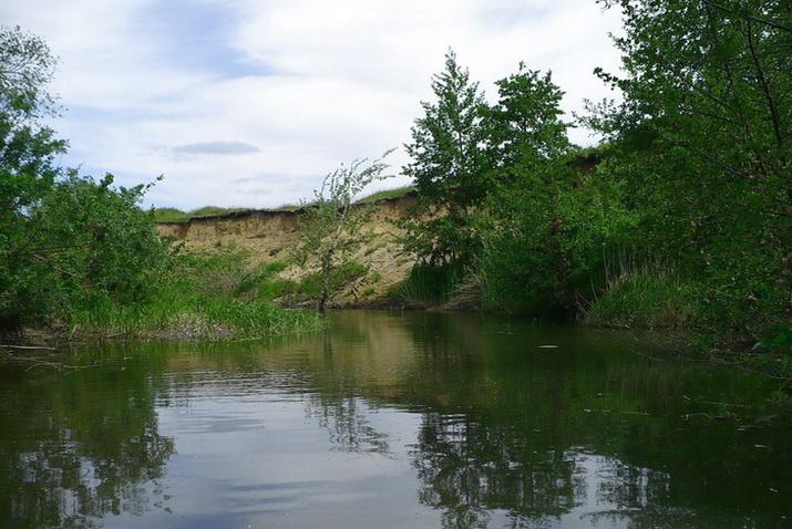 Как ловят карпа на небольшой реке