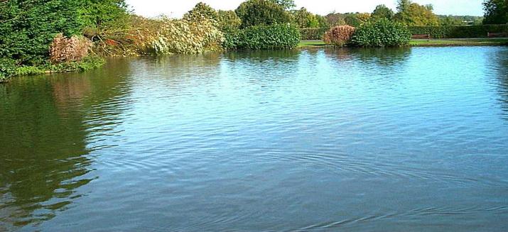 Советы по увеличению улова — сделайте рыбалку увлекательной