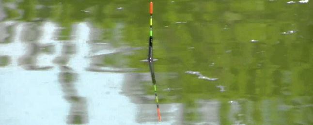 Во время рыбалки нужно следить за поплавком