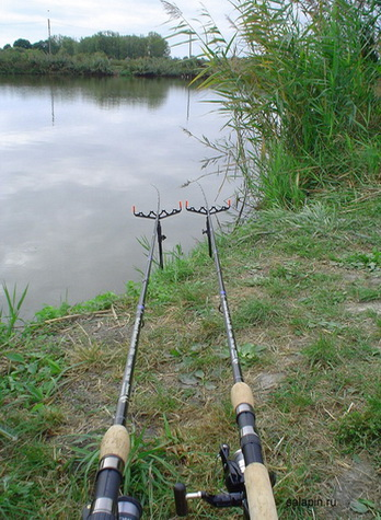 Два фидера наверно ловят рыбу