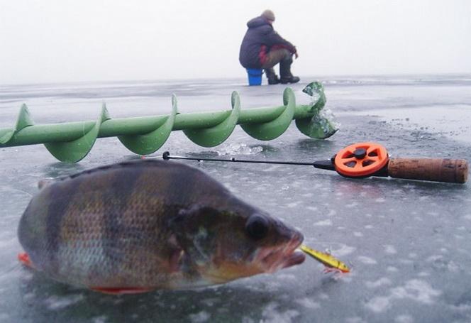 Оснатска для зимней рыбалки на балансиры