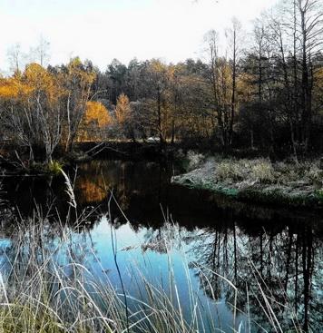 Ловля на реке зимой особенно эффективна