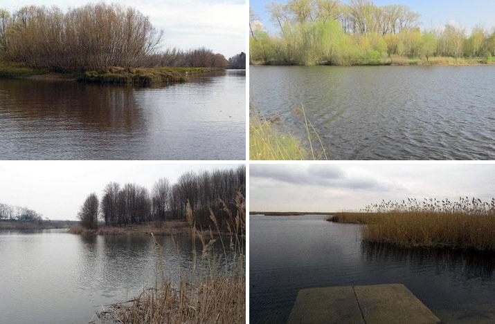 Водоемы весной - природа начианает оживать, а рыба начинает ловиться