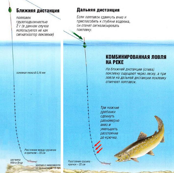 Методы ловли форели в реке