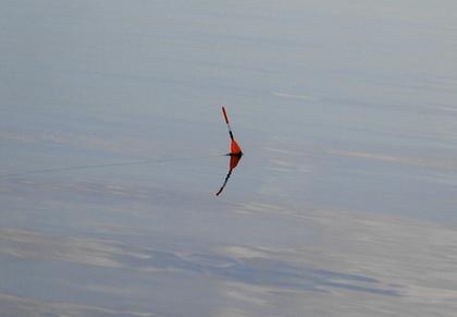 Ловля на поплавок - так ловят речную рыбу, в том числе и язя