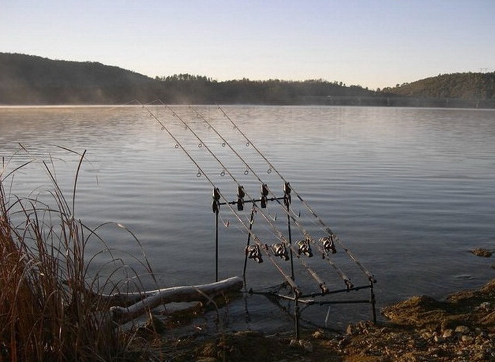 Рыбалка на карпа, берег водоема