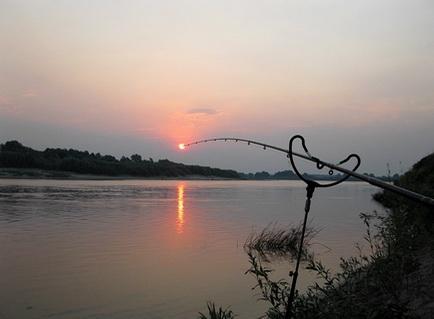 Ловля на фидер плотвы рано утром