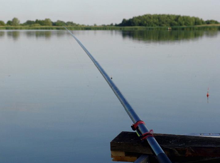 Надежная удочка для ловли крупной рыбы