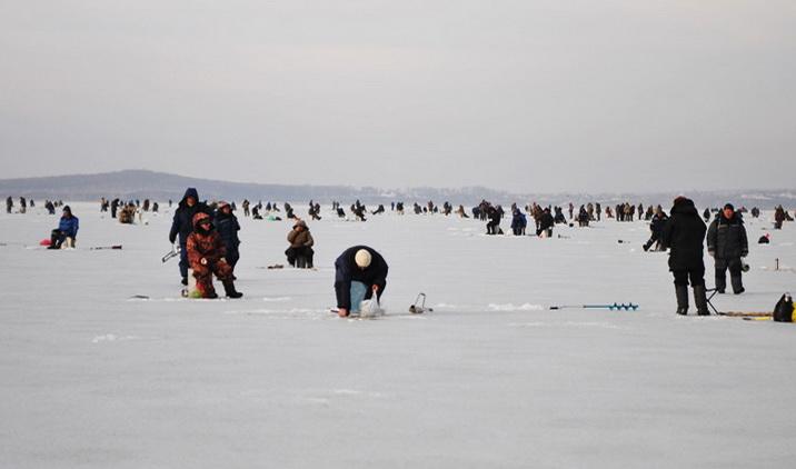 Много рыболовов нальду ждут поклевки