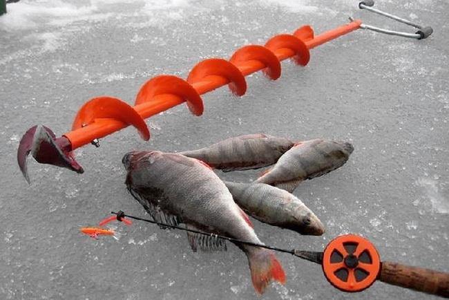 рыбные снасти на ловли рыбы зимой