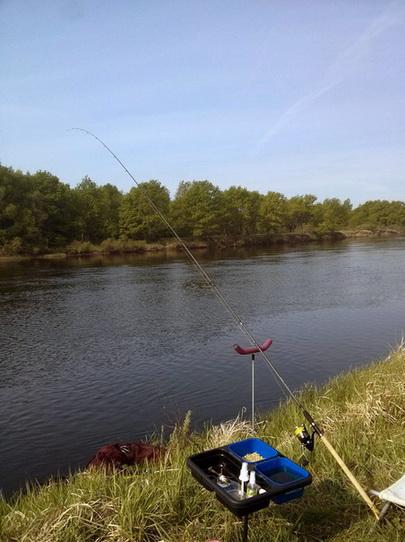 Удилище поднимается высоко над водой реки