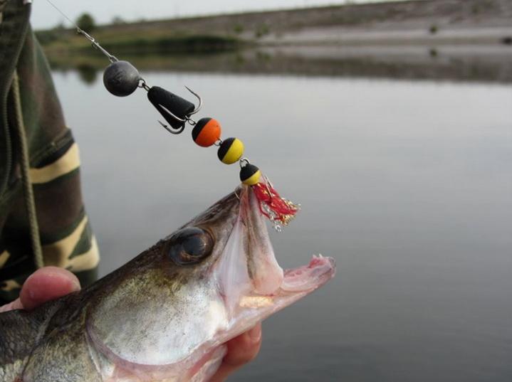 На мандулу ловится крупная рыба