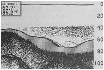 Отображение термоклина на эхолоте