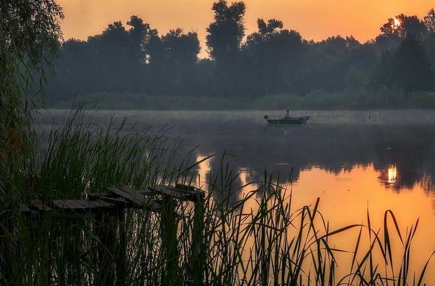 На тихом озере верховая рыба