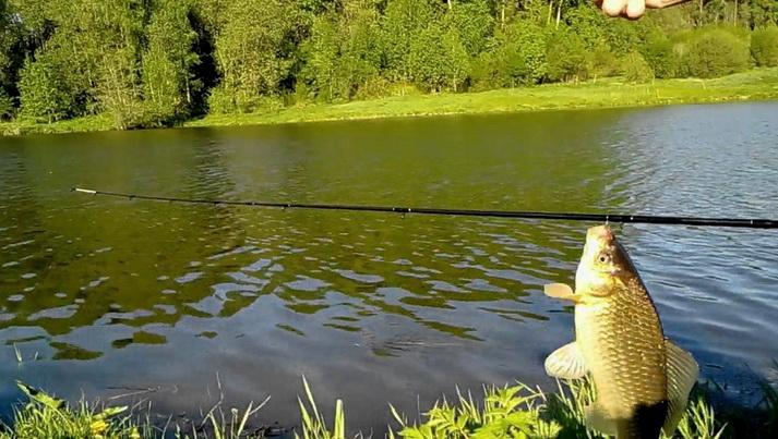 Крупная рыба на пикер на водохранилище