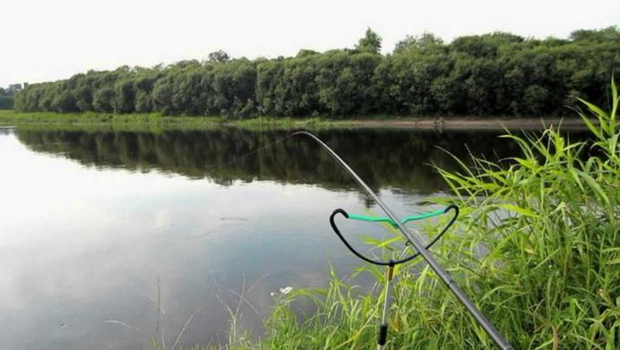 Ловля в заливе реки