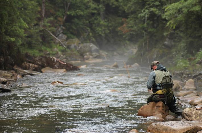 С нахлыстом на горной реке