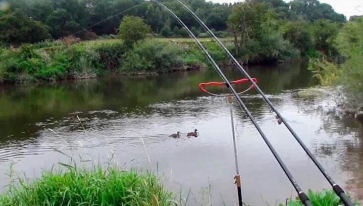 с фидером на реке