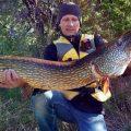 Подборка видеороликов о рыбалке на щуку