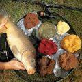 Наживка для рыбы