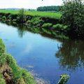 Со спиннингом по спрямленным рекам