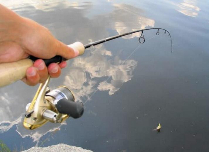 Какой выбрать спиннинг для рыбалки