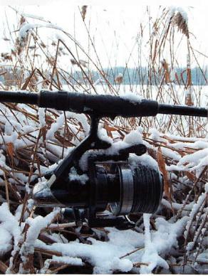 зимняя ловля карпа - замерзшая катушка