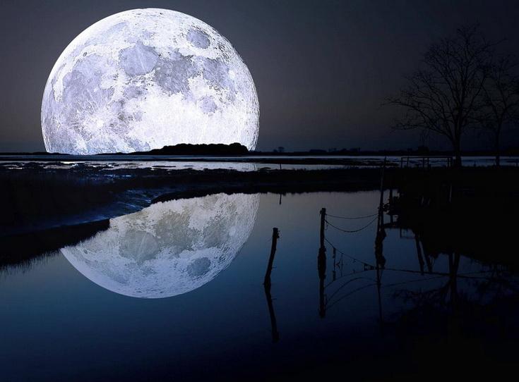 Клев рыбы при полной луне бывает