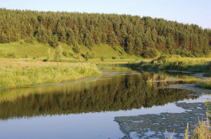 природа, река в Подмосковье