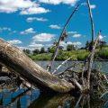Ловля рыбы на зацепистых местах — в корягах, в траве…