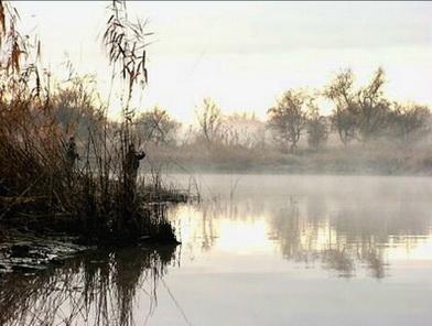 рыбалка удочкой осень на озере