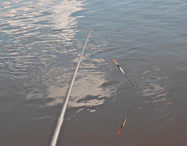ловля на полудонку в реке