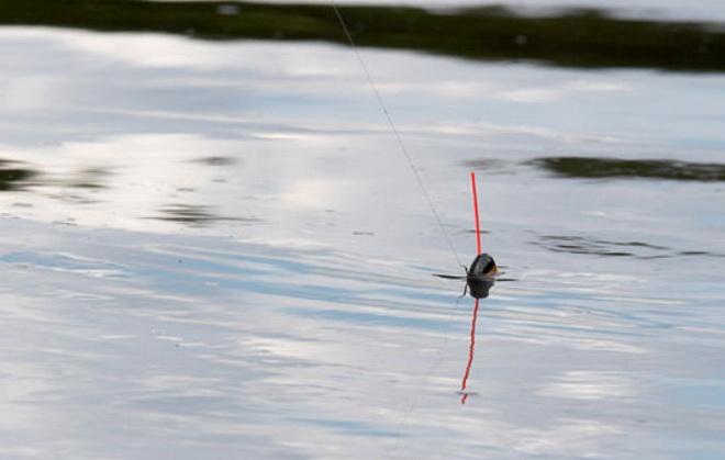 ловля на течении с плоским поплавком