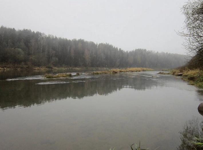 рыба на реке осенью