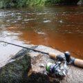 Ловля спиннингом на малых реках Подмосковья