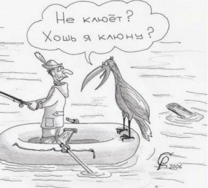 большой клев на рыбалке